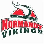 high school vikings logo
